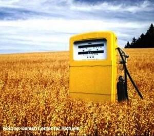 biofuels_vs_food_3