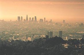pollution21